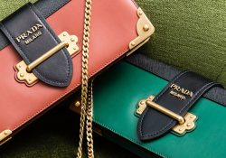 Prada-Cahier-Long-Clutch-with-Chain-7
